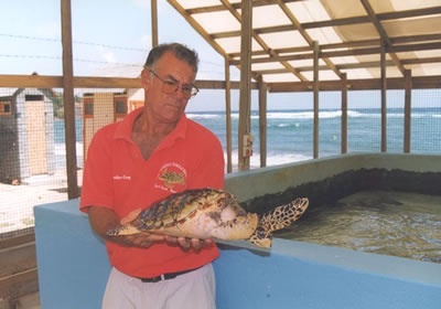 Brother King and Hawksbill turtle